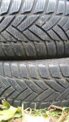 Пара шин 225/60R16 Dunlop M3