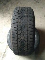 Пара шин 225/50R17 Dunlop Sp Winter Sport 4D RSC
