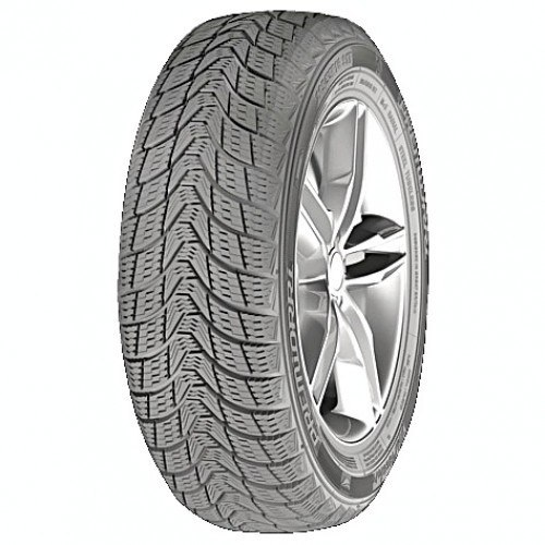 Зимняя шина 215/55R16 Premiorri Viamaggiore 93T