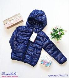 Куртка деми на мальчика модель - 284KS11