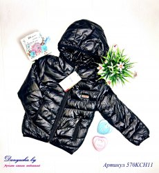 Куртка деми на мальчика модель - 570KCH11