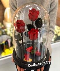 """Розы в колбе """"Трио"""" (цветы на выбор)"""