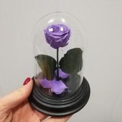 Роза в стеклянной колбе (лиловая) SuperMini