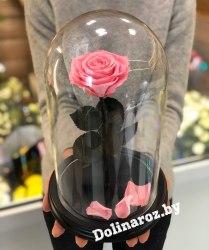 Роза в стеклянной колбе (розовая) Premium