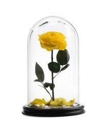 Роза в стеклянной колбе (желтая)