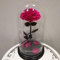 Роза в стеклянной колбе (ярко-розовая) SuperVIP