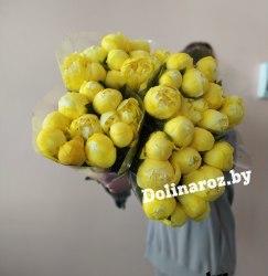Пион «Желтый» (1 шт.)