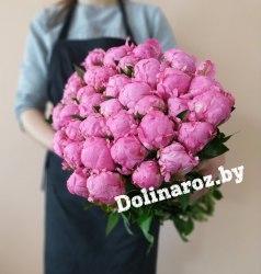 "Пион розовый ""Флеминг""(1 шт.)"