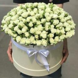 Коробку с белыми кустовыми розами 51 роза