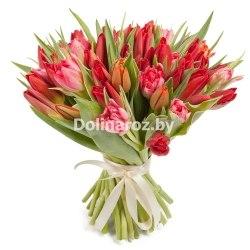 Букет красных тюльпанов 31шт.