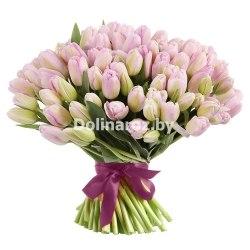 Букет розовых тюльпанов 101шт.