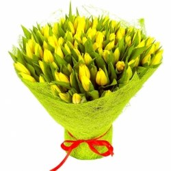 Желтые тюльпаны (101)