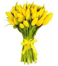 Букет желтых тюльпанов 25шт