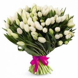 Букет белых тюльпанов 101шт.
