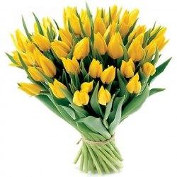"""Букет тюльпанов """"Весна пришла"""" 41 шт."""