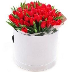 Коробка с красными тюльпанами 35шт