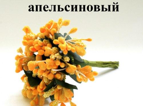 Сложная тычинка - додаток (незабудка)