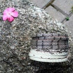 Браслет из натуральной кожи змеи натурального цвета
