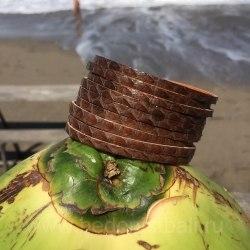 Браслет из натуральной кожи змеи коричневый