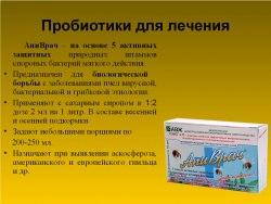 Пчело Нормо Сил - биокорм живых культур 1 фл. - 10 мл.