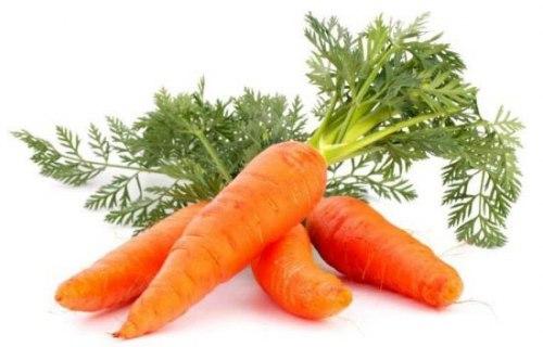 Морковь Крестьянское хозяйство