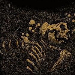 THRALL - Aokigahara Jukai CD Blackened Metal