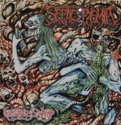 SEPTICOPYEMIA - Vomiting Swamp CD Goregrind