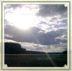 ЛИХОЛЕСЬЕ - Родные просторы CD Folk Ambient