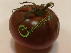 Семена томатов Чёрный айсберг - высокорослый, шоколадного цвета, сладкий с ароматом, очень урожайный, до 220 г. Семенаград - семена почтой