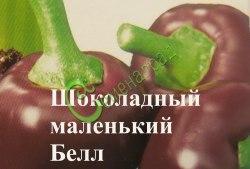 Семена сладкого перца Шоколадный маленький Белл, выведен во Франции - миниатюрные круглые перцы от 3,5 до 5 см в диаметре шоколадного цвета с темно-красной сладкой мякотью и приятным фруктовым ароматом. Семенаград - семена почтой