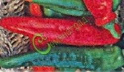 Семена острого перца Украинский - красный, крупный, удлинённый (до 20 см). Семенаград - семена почтой