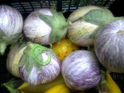 Семена баклажана Матросик - 10 семян - плоды средних размеров, полосатый, ранний