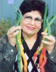 Семена трихозанта Трихозант японский (змеевидный огурец) - тонкостебельная лиана, высотой до 3 м, плоды, напоминающие воздушных змей длиной до 1м, съедобны в сыром и горячем виде, по вкусу похожи на огурцы с привкусом сладкого редиса, плоды малосемянные - эксклюзив. Семенаград - семена почтой