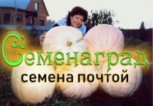 Семенаград. Редкие семена почтой - Садовый Питомник Семенаград. Более 30 лет выращиваем и рассылаем семена почтой!