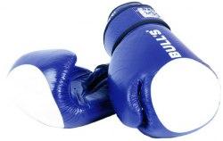 Перчатки боксёрские Bulls TT-2002