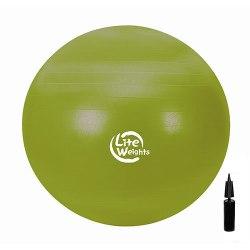 Мяч гимнастический с насосом 65 см Lite Weights 1866LW