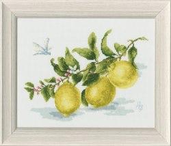 Набор для вышивания Золотое руно Веточка лимона