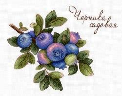 Набор для вышивания М.П.Студия Черника садовая
