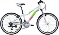 Горный Велосипед Welt Edelweiss 24 2020