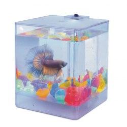 Аквариум Betta Aqua Box, 1,3л, 120*120*145мм