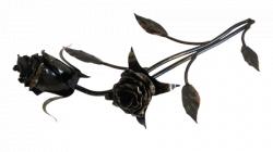 Роза с двумя бутонами ЗСИ