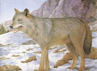Мишень JVD Волк