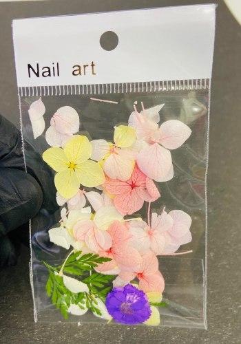 Набор сухоцветов для дизайна