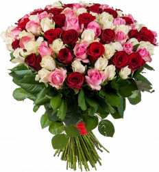 Букет из 101 красной и розовой розы - 60 см