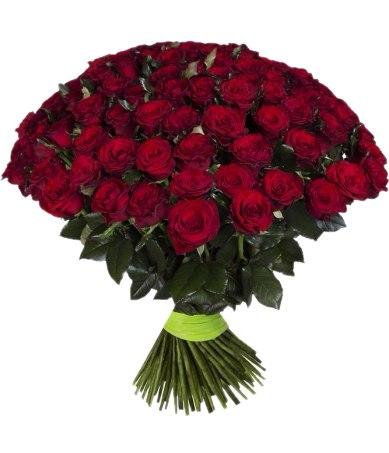 Букет 101 красная роза - 50 см