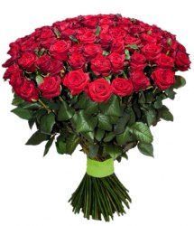 Красные розы 101 шт - 50 см