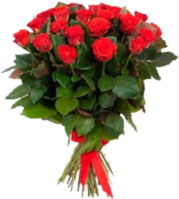 Букет из красных роз Эль Торо - 25 шт, 70 см