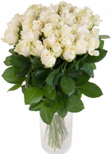 Букет из белых роз Аваланч (35 шт./70 см)