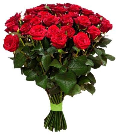 Букет из красных роз Гран При 25 шт, 80 см