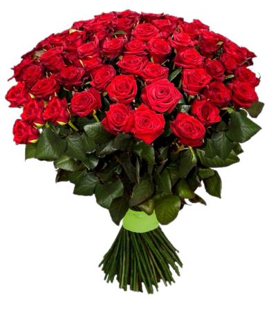 Букет из красных роз Гран При 35 шт, 80 см